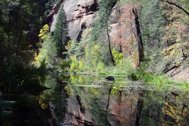 Sedona-Figure-1-West-fork-trail-820